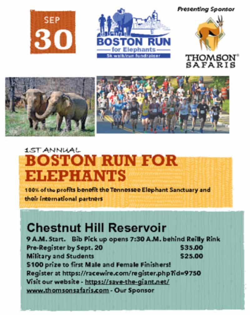 Boston Run for Elephants