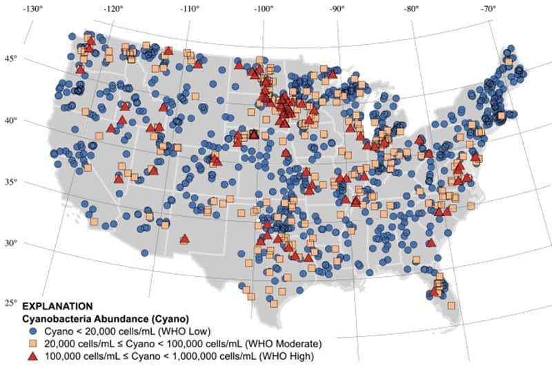 USA map of dangerous cyanobacteria growth in lakes