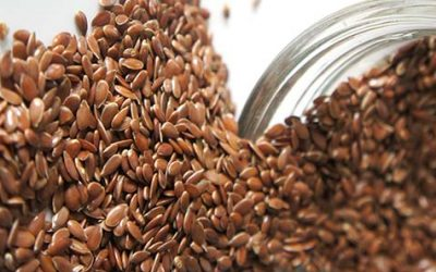New Flax Seed — But Newer May not Be Better